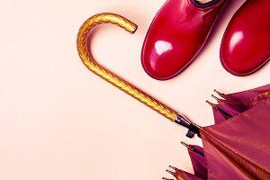 female fashion autumn accessories sh