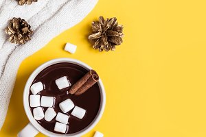 Hot chocolate cup with cinnamon and
