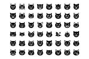 48 Cat Face Vector