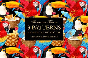 Macaw and Toucan Patterns