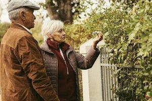 Elderly couple looking at flowers