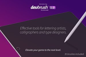 DevBrush™ 3.0 for Procreate