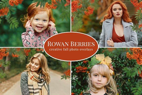 Rowan Berries photo overlays