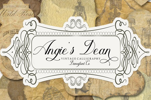 Angie's Dean