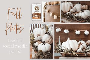 Fall Moody Stock Photo Bundle