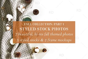 Styled Stock Photography: Fall Part1