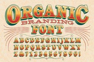 Organic Branding Display Alphabet