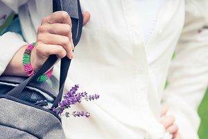 beautiful summer purple field flower
