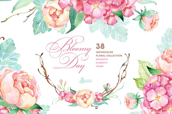 Bloomy Day. Floral Collection - Illustrations