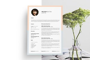 Resume Template. CV Template. 5 Page