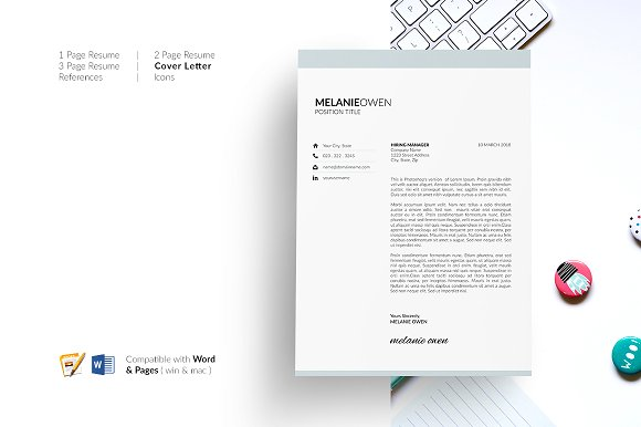 5 Page Resume  CV Template  Resume