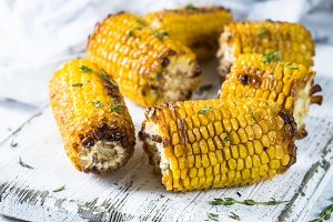 Grilled corn with spices on white.