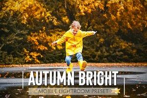Mobile Lightroom Preset Autumn Brigh