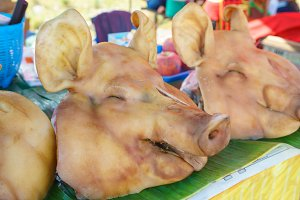 Boiled pigs heads on tray