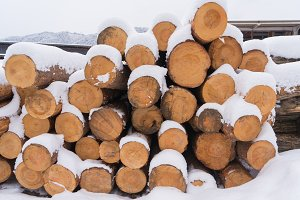 Firewood covered with snow stacked