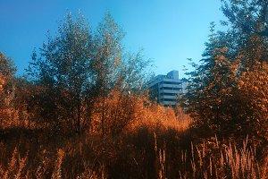 Chernobyl city during radioactive au