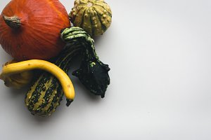 Autumn pumpkins on a plate