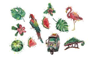 Watercolor jungle collection