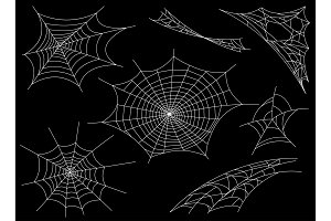 Collection of Cobweb, isolated on