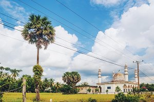 Small Mosque Countryside