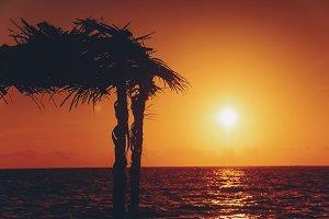 Tropical beach shack at sunset