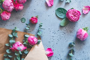 Pink roses in the envelope on a grey
