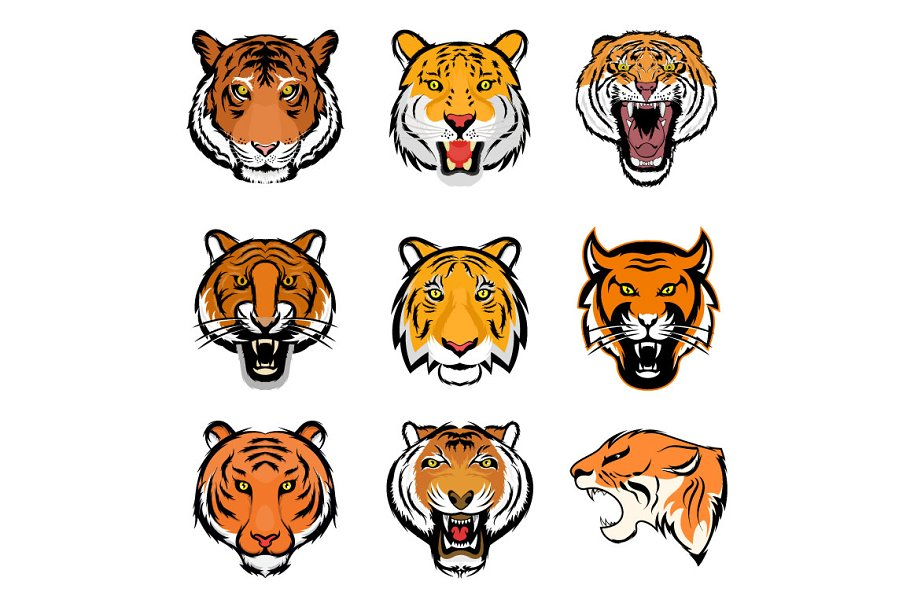 9 Tiger Face Vector Illustrations