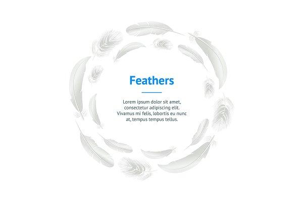 3d White Bird Feathers Set