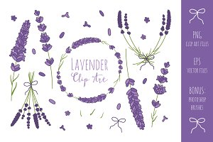 Lavender Branches Clip Art  + Vector