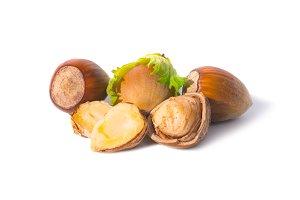 Pile of hazel nuts