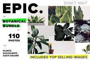 Botanical Photo Bundle Collection