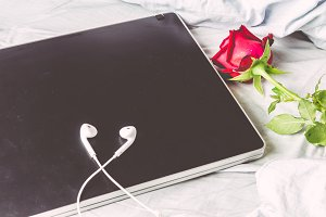 Laptop and red rose  on white bed