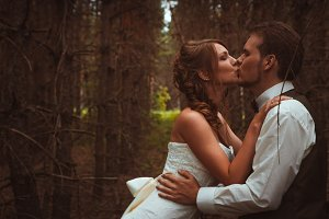 bride and groom in the forest of fir