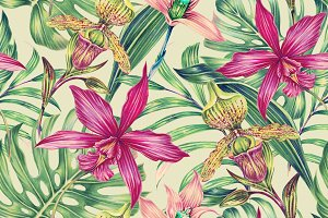 Tropical orchid botanical pattern