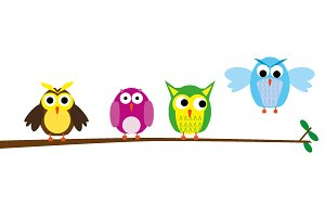 Vector Illustration of Owls