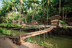 Bridge across jungle river