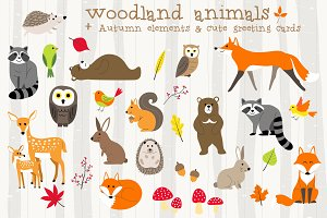 Woodland animals autumn set