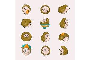 Hedgehog vector cartoon prickly