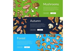 Vector hand drawn mushrooms banners