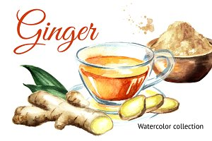 Ginger.Watercolor collection