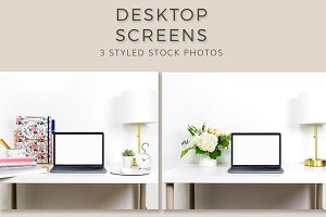 Desk Screens (3 Images)