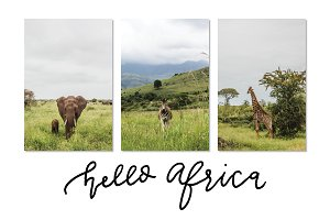 Hello Africa   3-Pack Stock Photos