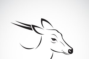 Vector of Barking deer.Wild Animals.