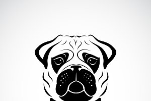 Vector of pug dog face design. Pet.