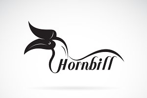 Vector of hornbill is text. Bird.