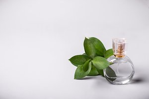 Bottle of perfume and green twig. Pe