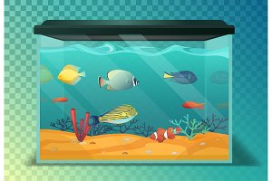 Glassware aquarium or fish tank