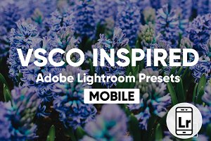 Lightroom CC Mobile VSCO Presets