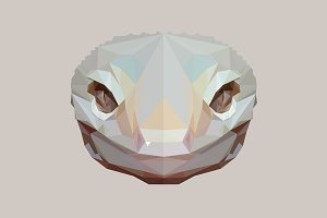 Low poly gecko