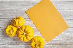 pumpkin with Orange paper sheet